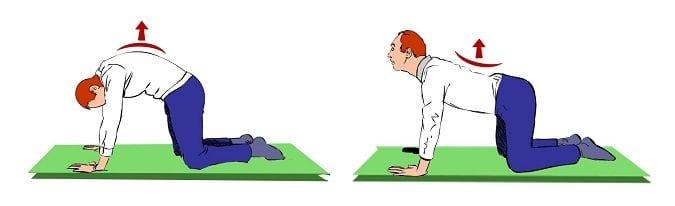 Image démontrant l'enretien de la mobilité du dos en flexion extension